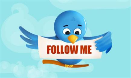 twitter_bird_follow_me